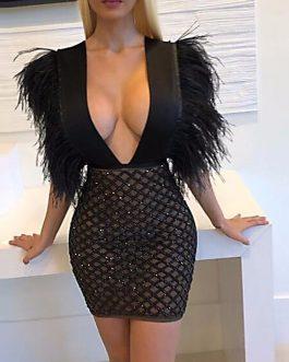 Vestido de lentejuelas y plumas